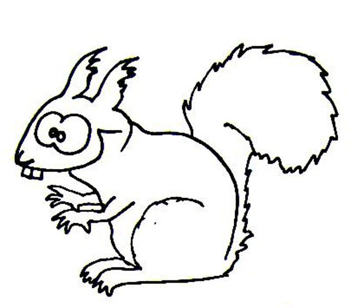 Eichhörnchen Wuschels Malvorlagen