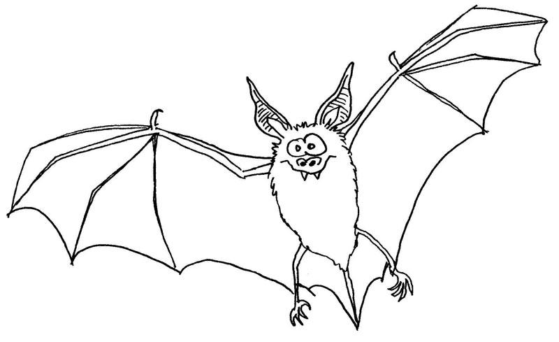 halloween kleurplaat vleermuis fledermaus fliegt kurve