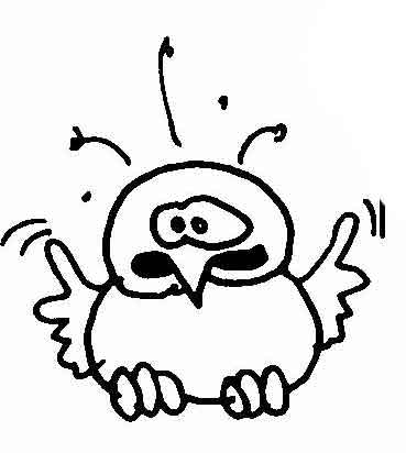 Vögel | Wuschels Malvorlagen