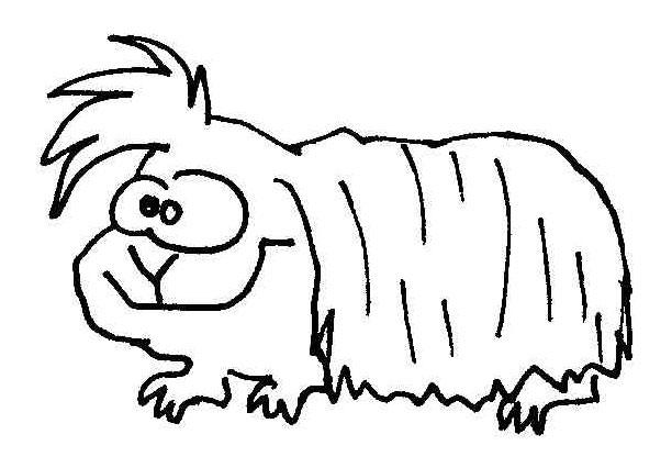 Meerschweinchen Wuschels Malvorlagen