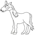 pferd02